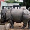 Patan Zoo